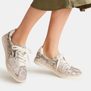 Dolce Vita Maddox Snake Print Leather Sneakers NEW